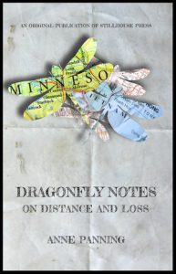 Cover of Anne Panning's Dragonfly Notes